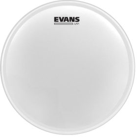 Evans B16UV1