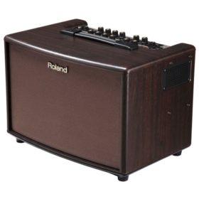 Roland AC-60RW