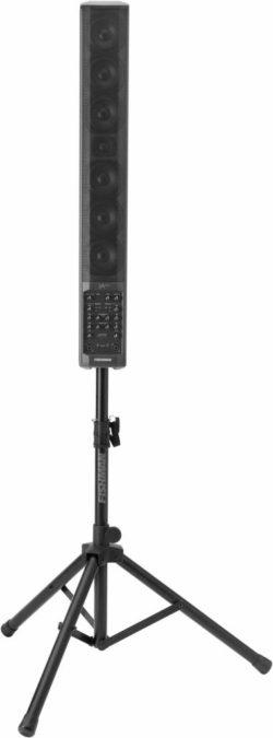 Fishman SA300X Pro-Amp SL-2