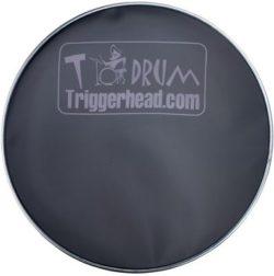 Trigger Head TH10