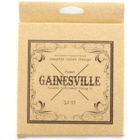 Gainesville 012-053 Acoustic Posphor Bronze