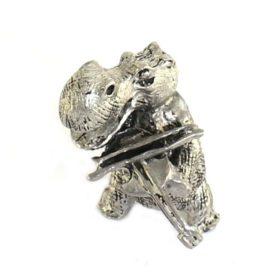 Nijlpaard met Viool