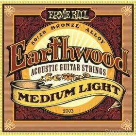 Ernie Ball 2003 Earthwood 80/20 Bronze