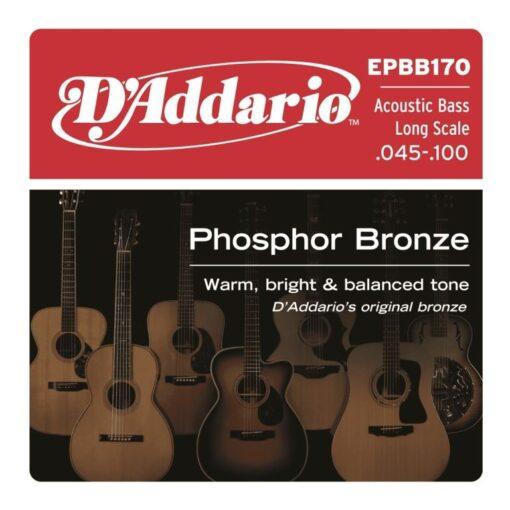 D'addario EPBB170 Acoustic Bass Long Scale