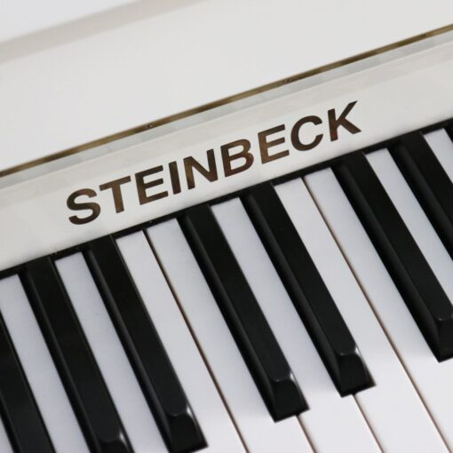 Steinbeck Classic 115